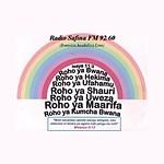 Radio Safina FM
