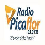 Radio Picaflor 96.3 FM