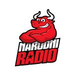 Narodni Radio Zenica
