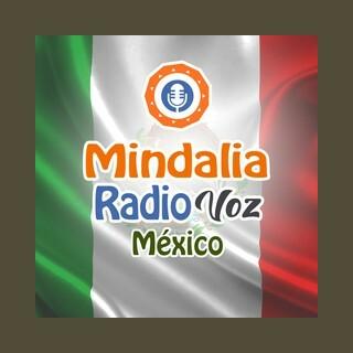 Mindalia Voz México