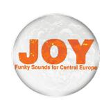 Radio Joystick