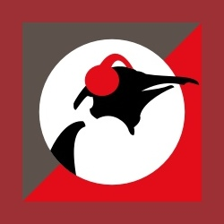Pinguin Fiesta