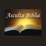 Biblia Audio in Limba Romana