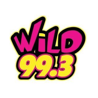 KWLZ Wild 99.3 FM