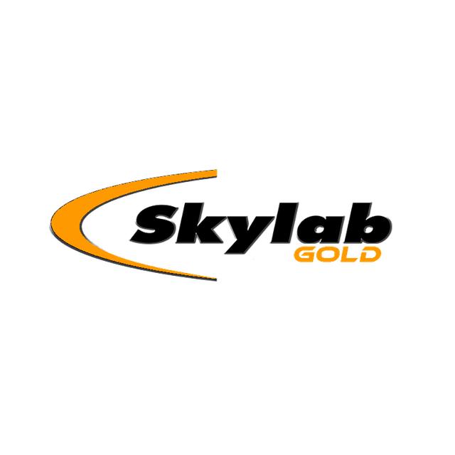 Radio Skylab Gold