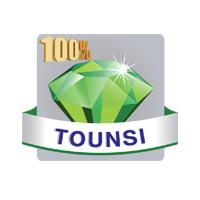 100% TOUNSI WEB RADIO