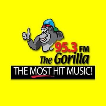 WZNF Gorilla 95.3 FM