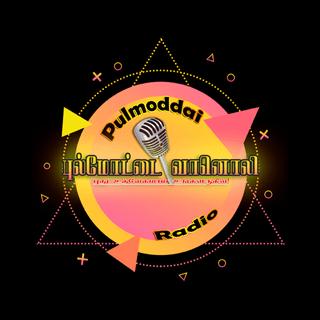 Pulmoddai Radio