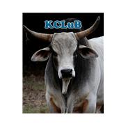 LKCB 128.4 Blues