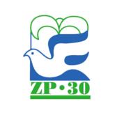 Radio ZP 30