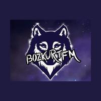 Bozkurt FM