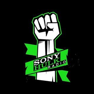 SONY HULK RADIO