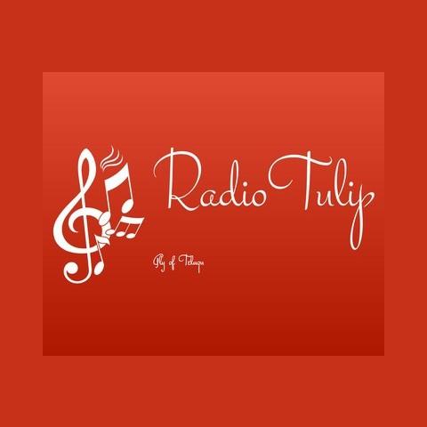 RadioTulip-Telugu