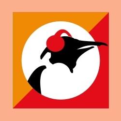 Pinguin Indie