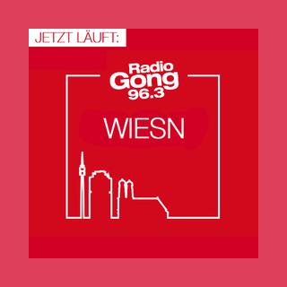Radio Gong 96.3 - Wiesn Hits