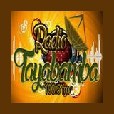 Radio Tayabamba 100.5 FM